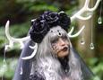 /www.artism.jp/ad_a232_02.jpg