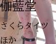 /www.artism.jp/ad_g086_02.jpg