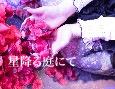 /www.artism.jp/ad_h176_02.jpg