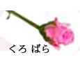 /www.artism.jp/ad_k149_02.jpg