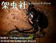 /www.artism.jp/ad_k159_02.jpg
