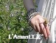 /www.artism.jp/ad_l097_02.jpg