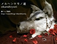 /www.artism.jp/ad_m237_02.jpg