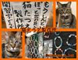/www.artism.jp/ad_n131_02.jpg