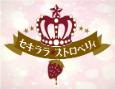 /www.artism.jp/ad_s263_02.jpg
