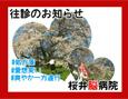 /www.artism.jp/ad_s316_02.jpg