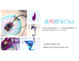 /www.artism.jp/ad_t214_02.jpg