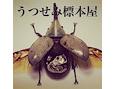 /www.artism.jp/ad_u060_02.jpg