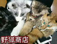 /www.artism.jp/ad_y081_02.jpg